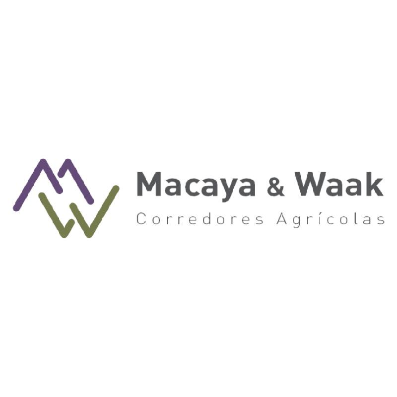 logo_myw_800x800