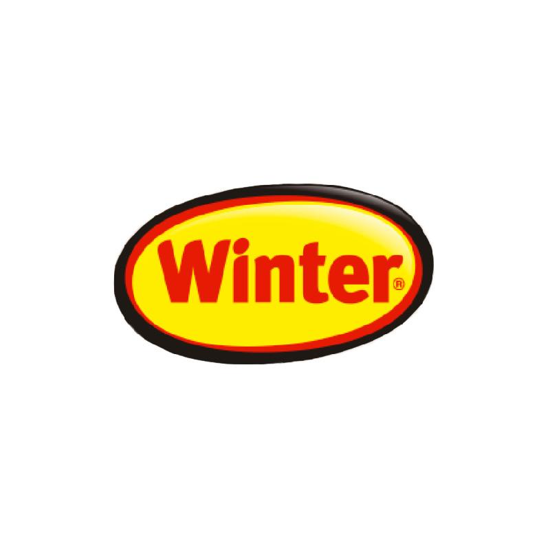 logo_winter_800x800
